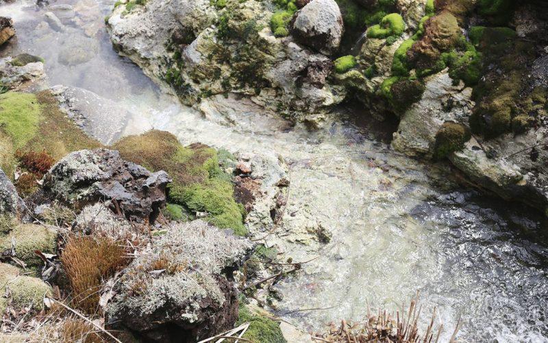 野反湖とチャツボミゴケ公園散策ツアー②